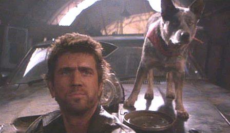 "- Mel Gibson e il cane ""Dog"" insieme alla V8 Interceptor -"
