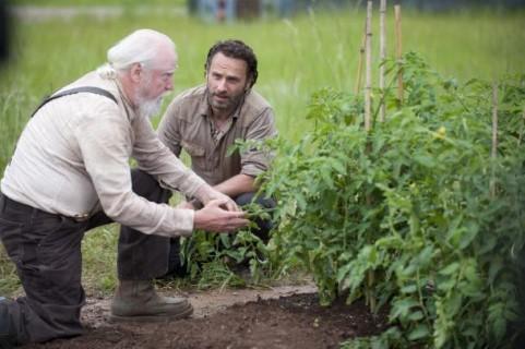 """""""Tu sarai Rick il Contadino"""""""