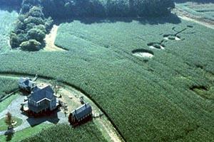 Questa è la fattoria di Signs...