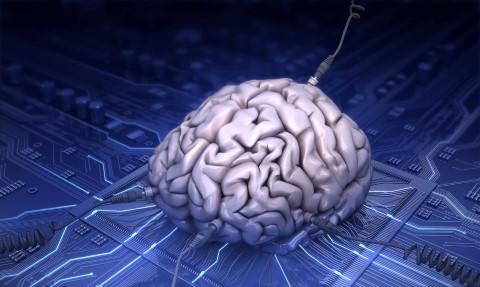 braing (Mobile)