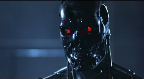 t-800-319705 (Mobile)