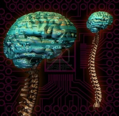 275287-cyber-virtual-processor-computer-calculator-brain-mind-power-spine-spinal-cord-anatomy-robot-artific